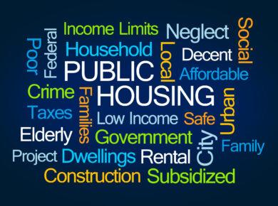 Public Housing Word Cloud