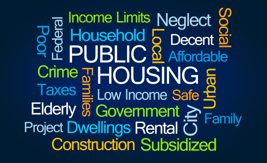 Public Housing Word Cloud